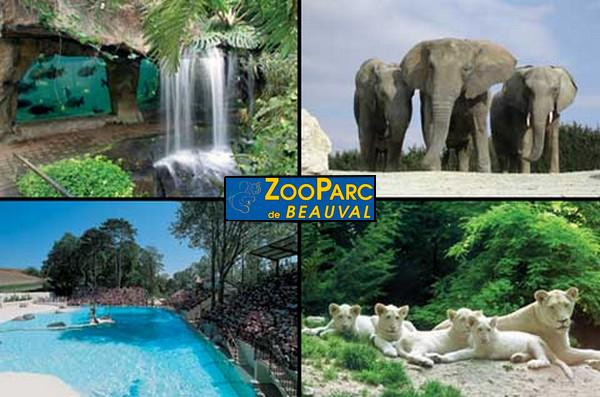 Zoo parc de beauval les parcs d 39 attractions fran ais for Chambre zoo de beauval