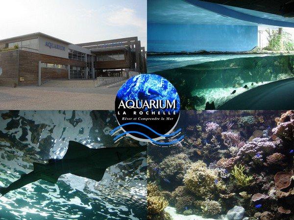 Aquarium de la Rochelle - Les parcs dattractions francais