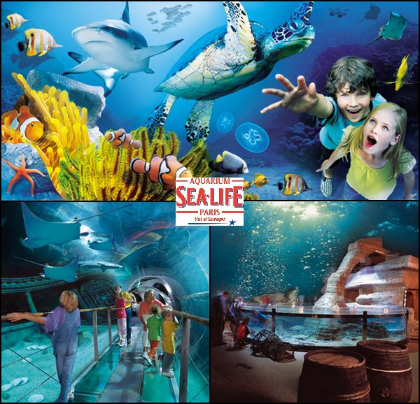 Sea Life Paris - Les parcs dattractions francais